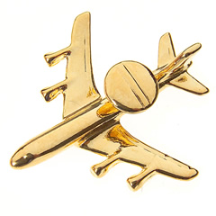 e-3a sentry pin badge